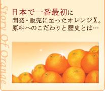 日本で一番最初に開発・販売に至ったオレンジX。原料へのこだわりと歴史とは・・・